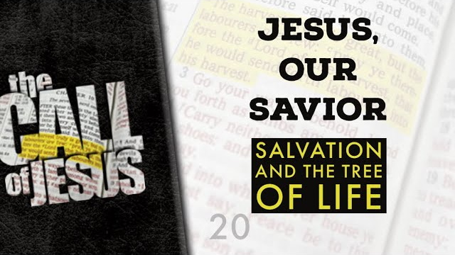 20/26 – JESUS, OUR SAVIOR – The Good News About Salvation And The Tree Of Life