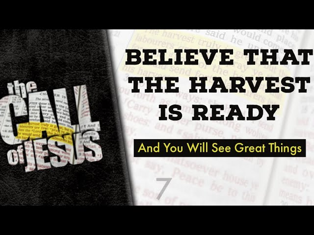 7 – BELIEVE THAT THE HARVEST IS READY And You Will See Great Things